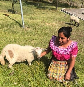 Young woman shepherd